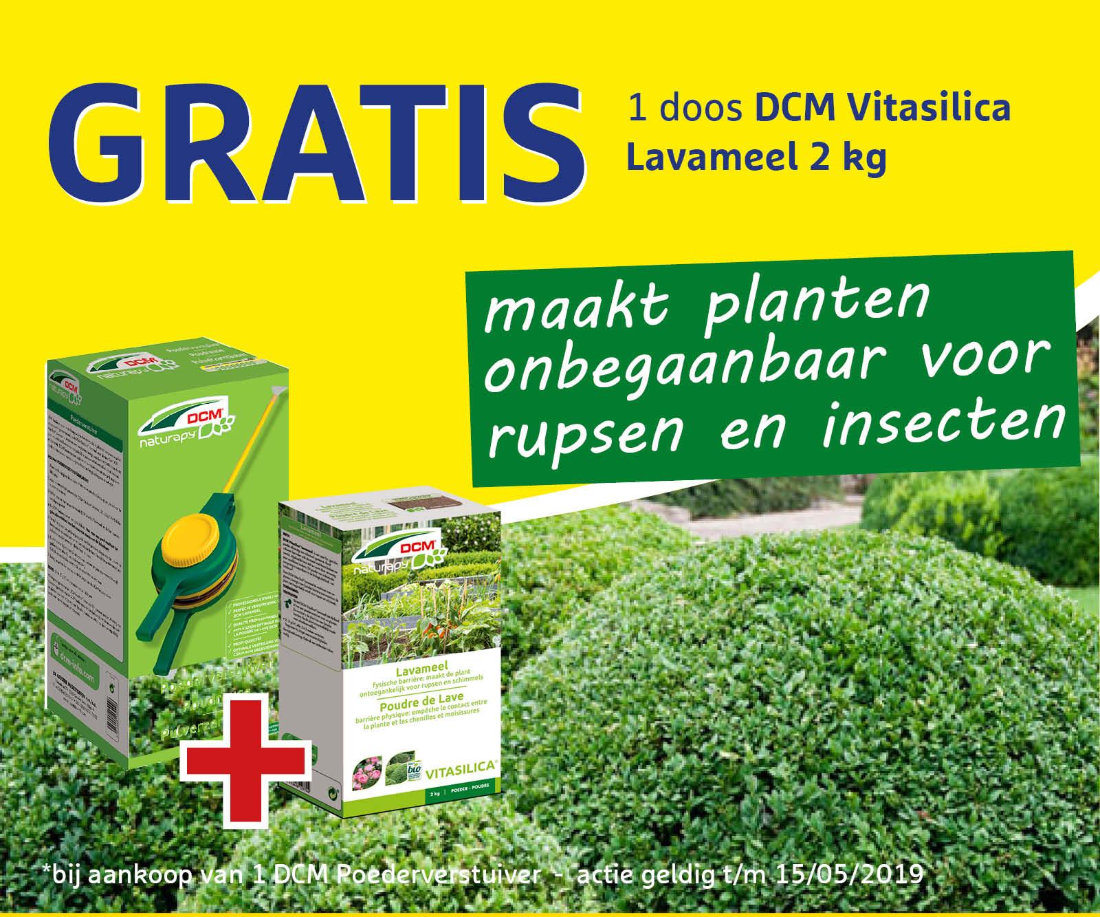 Actie Gratis Vitasilica Lavameel (met buxus)