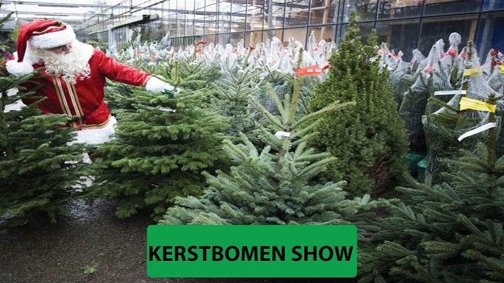 Kerstbomen-van-goede-kwaliteit